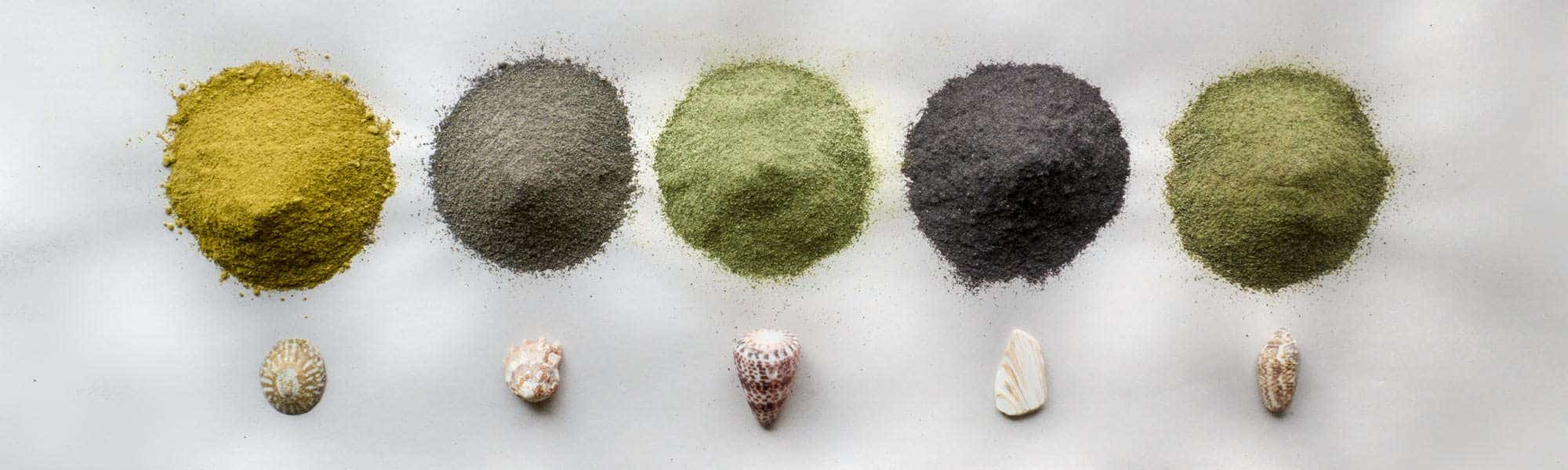 Seaweed Powder Header Image