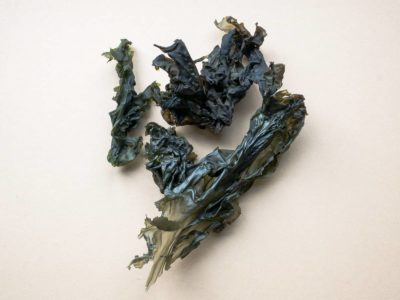 Nori Whole Seaweed Cream Background