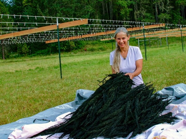Kari in front of the drying rack with a bundle of sea vegetables