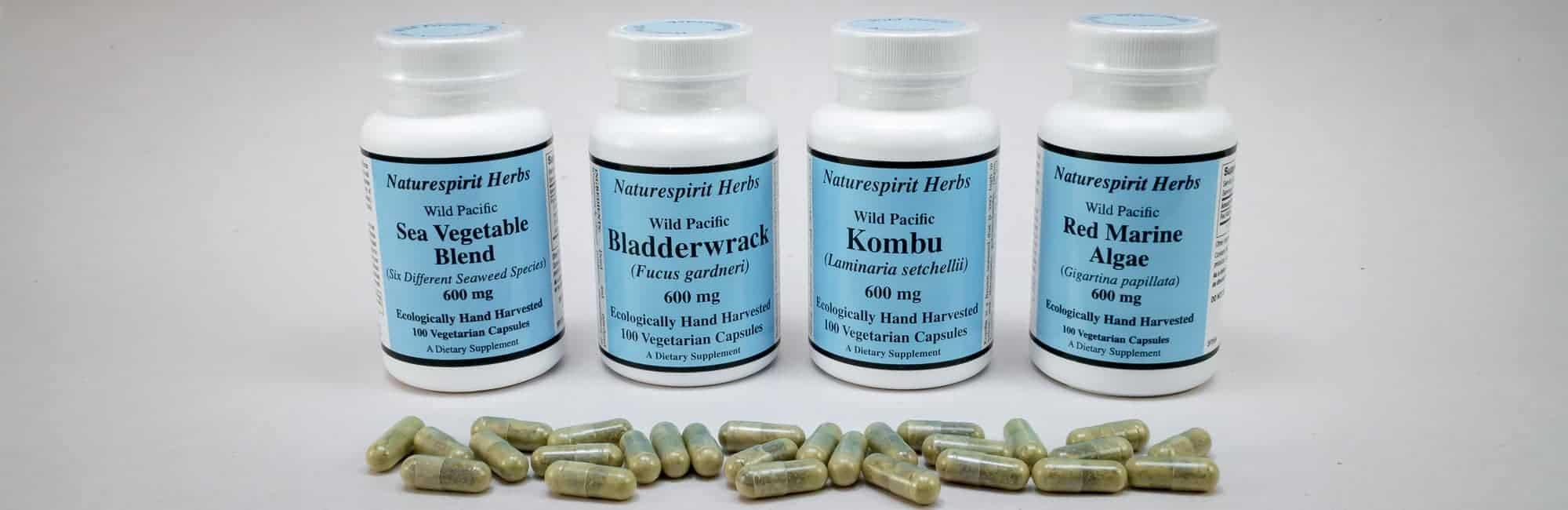 Pure Seaweed Capsules Hero 2 - Naturespirit Herbs Seaweed Capsules
