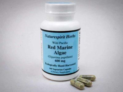 Red Marine Algae Seaweed Capsules